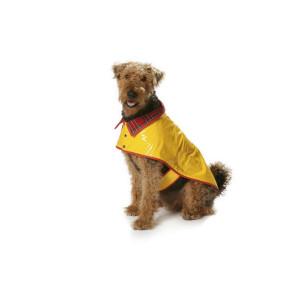 Hunde-Accessoires #7752